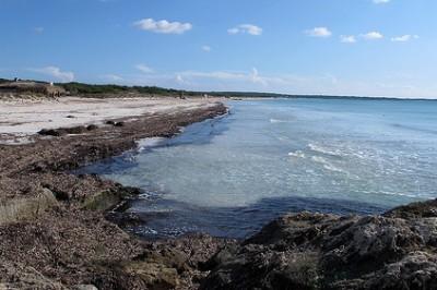 Maiorca spiagge