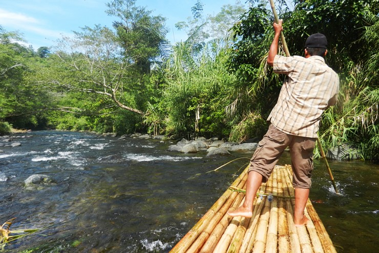 Kalimantan - Loksado: bamboo rafting