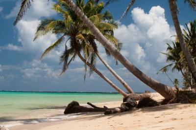 isole tropicali