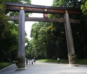 Tokyo - Meiji jingu