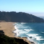 California: Big Sur, la Highway 1 e gli elefanti marini