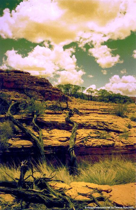 Uluru Kata Tiuta National Park - Australia