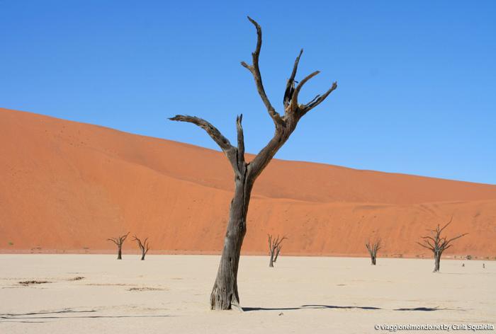 Viaggio Namibia - Sossusvlei, Dead Vlei
