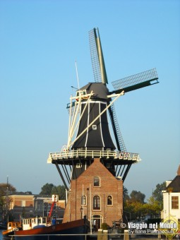 Haarlem - Mulino  D Adriaan