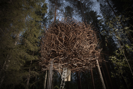 Birds_nest_treehousehotel