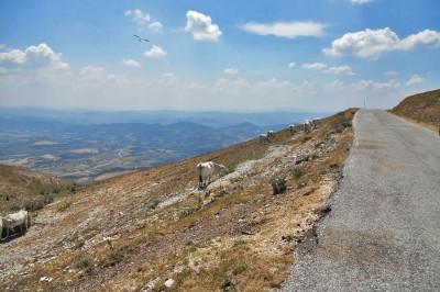 Umbria, itinerario tra Monte Subasio e Monte Cucco