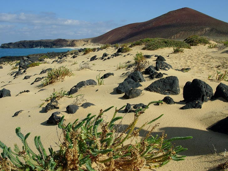 spiagge Canarie
