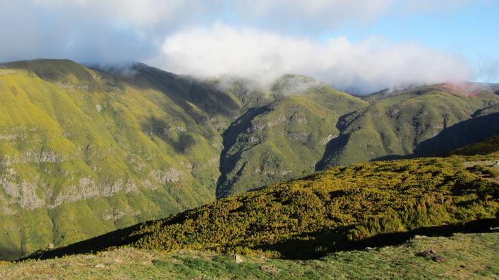 Parchi naturali Madeira