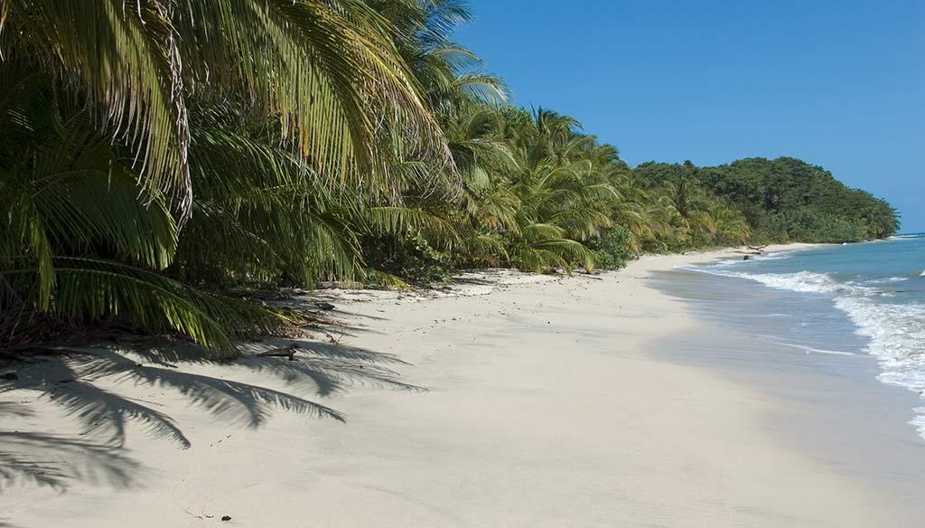 Costa Rica, spiaggia Parco Nazionale Cahuita