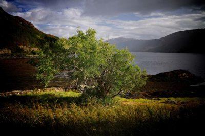 Dornie, Scozia