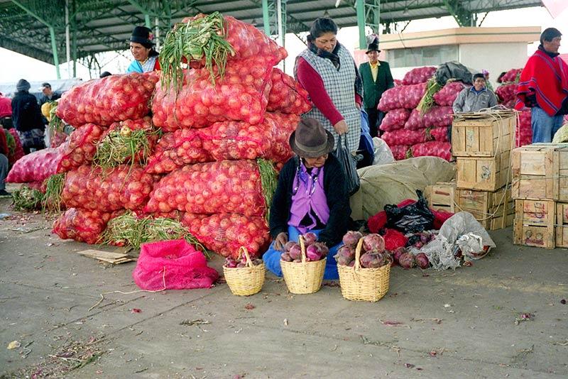 Ambato Ecuador, mercato