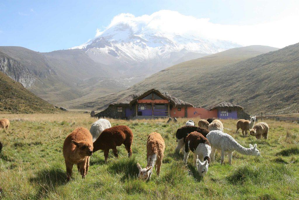 Ecuador, a piedi verso la cima del Chimborazo