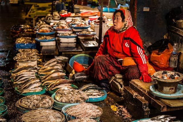 Busan, Mercato del pesce