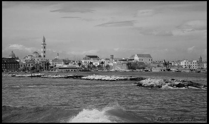 Bari, Marco Tamma