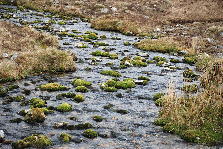 Lairig Mor, trekking WHW Scozia