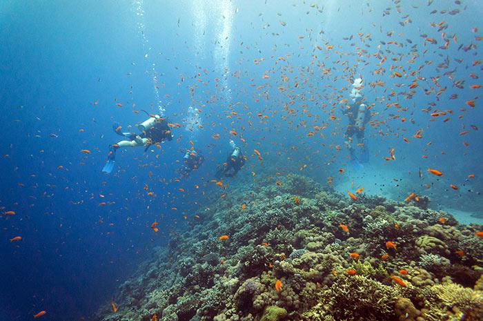 Dahab, Mar Rosso