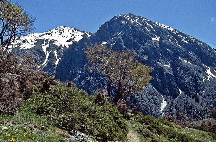 Monte Gingilos, Creta