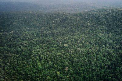 aborigeni Andamane