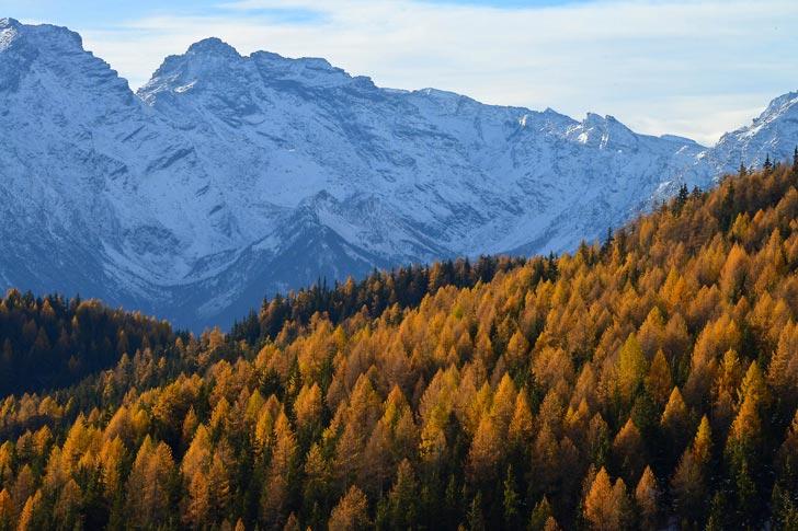 Valle d'Aosta passeggiata Torgnon