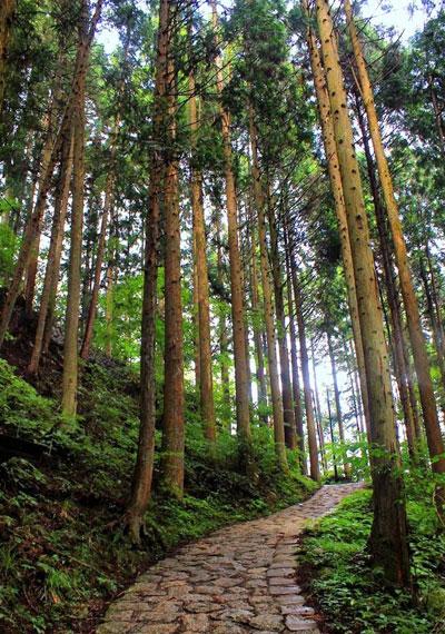 trekking Nakasendo
