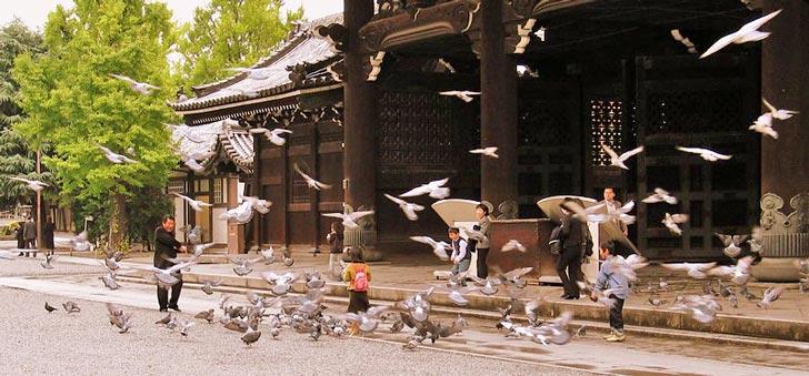Templi Honganji, Kyoto