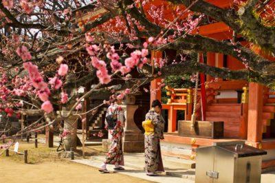 Kyoto cosa vedere gratis