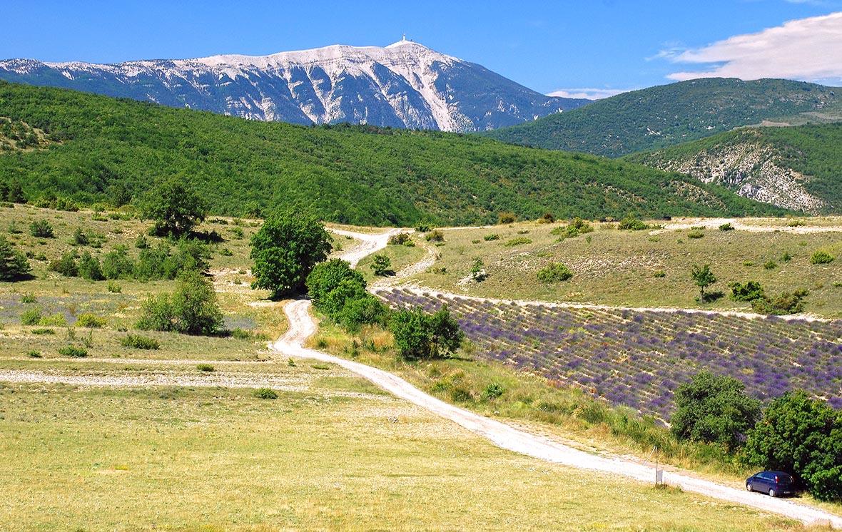 Mont Ventoux, Provenza
